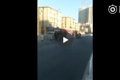 大连一老大娘被摩托车撞倒 肇事司机逃逸