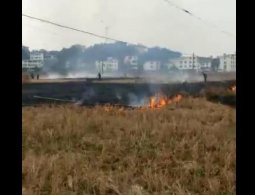 赣州南康三江乡饶家范屋葡萄园突发火灾