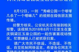 秀峰公园发生杀人凶杀案系谣言